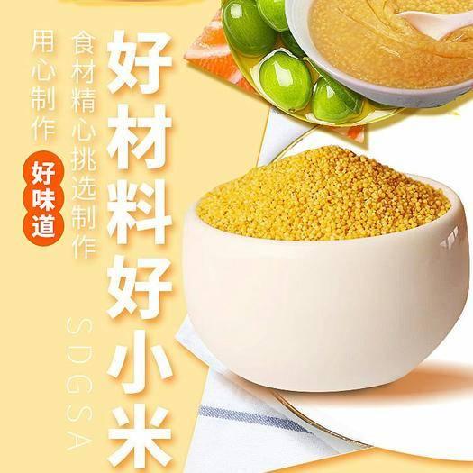 榆林米脂縣 米脂小米暢銷全國,保證質量。