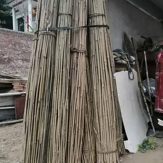 西安周至縣楠竹 大量出售竹竿