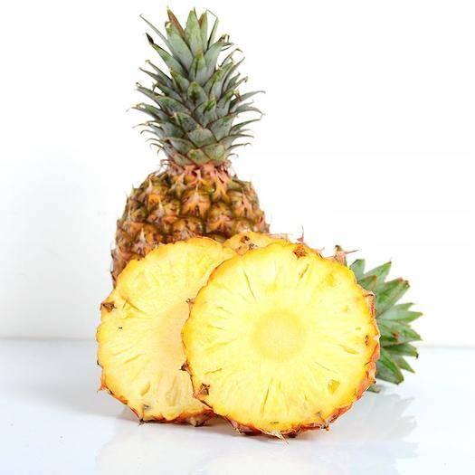 钦州灵山县 香水菠萝苗 可盆栽可地植成活率高产量高包邮