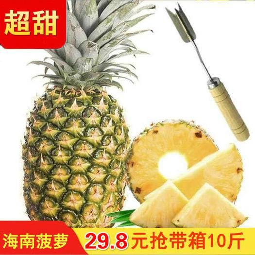 海口 【坏果包赔】海南新鲜大菠萝手撕香水菠萝凤梨5/10斤水果