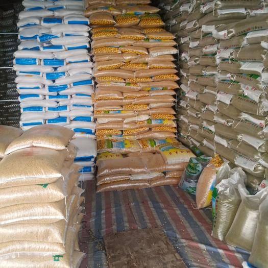南寧進口綠豆 柬埔寨進口豆