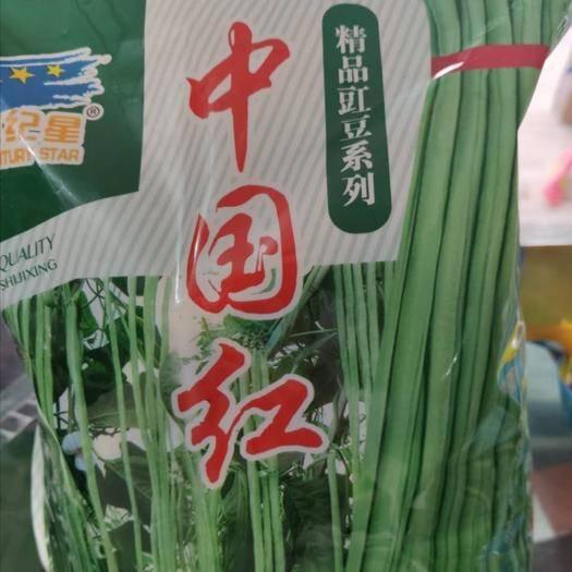 潍坊寿光市 长青豆角种子!纯度高肉厚加长型产量高耐老!