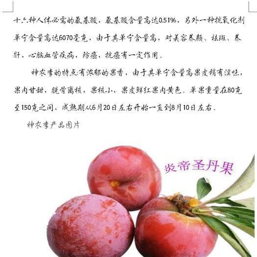 隨州曾都區神農李 純天然貴族水果