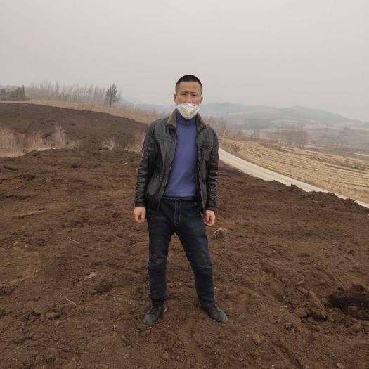 哈尔滨尚志市木炭