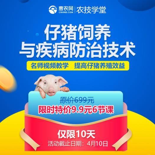 长沙农技人员 仔猪饲养与疾病防控技术|农技专家视频教学 9.9元6节课!