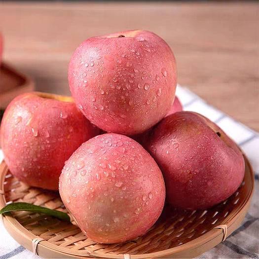 临猗县 【脆甜】山西丑苹果应季新鲜水果红富士5/10斤装冰糖心苹果