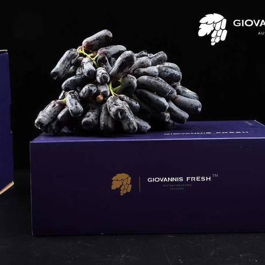 广州金手指葡萄 【高端礼盒→澳洲蓝宝石】甜蜜来袭花青素含量丰富新鲜可约哦~