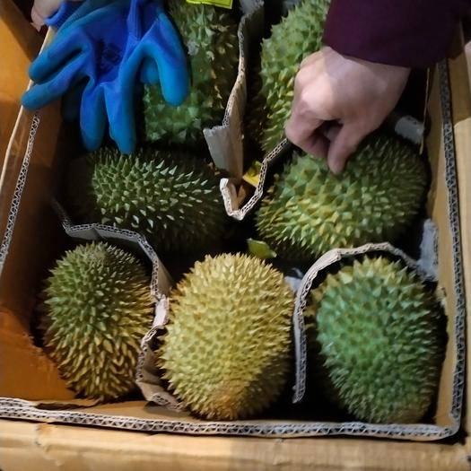 凭祥市 泰国榴莲副业邀请函诚招水果代卖