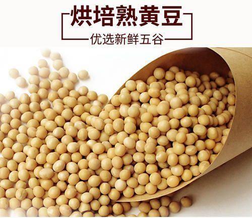 利辛县黄大豆 熟黄豆 黄豆 低温烘焙黄豆 五谷养生磨坊原料 五谷杂粮