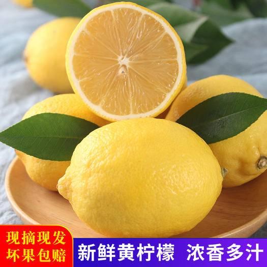 安岳縣 安岳檸檬新鮮水果皮薄多汁