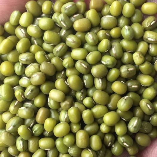 中牟縣 2019年 新綠豆 東北特產 五谷雜糧