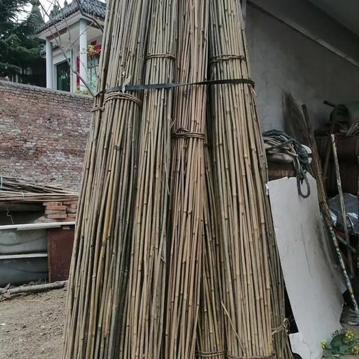 周至县金竹 大量出售竹竿