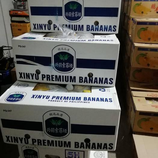 北京菲律宾香蕉 比质量,此价格,比服务