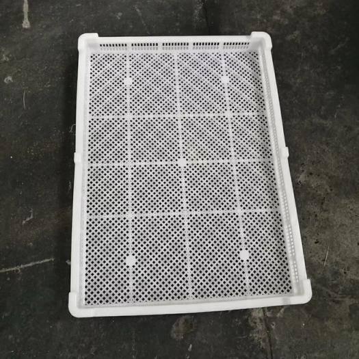 東莞市塑料筐 烘干盤單凍器瀝水架晾曬方盤烘干周轉筐膠框周轉箱