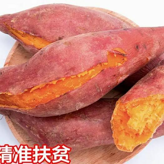 濟南 新鮮沙地蜜薯紅薯甜番薯地瓜 一件發貨包郵 下單選規格
