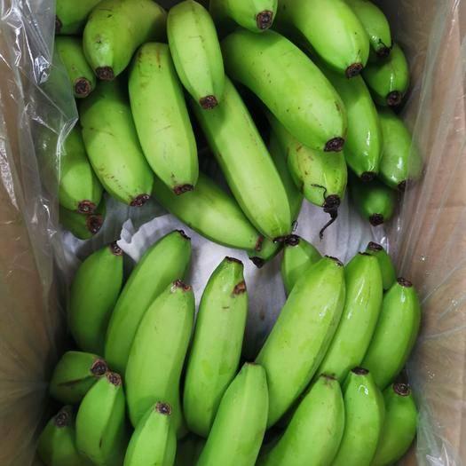 邯郸河口香蕉 云南三把蕉,果面干净,价格不高