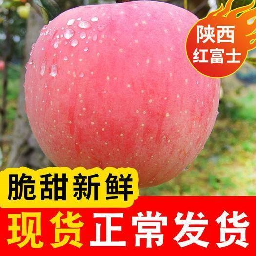 礼泉县 陕西红富士苹果水果10斤新鲜当季红富士丑平果包邮一件代发