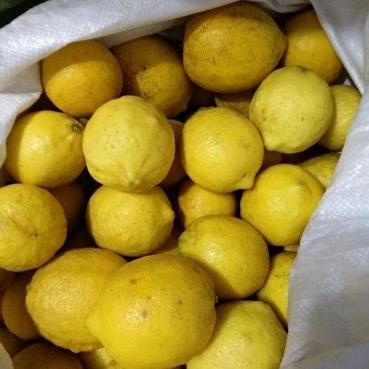 成都 安岳檸檬滯銷8毛一斤