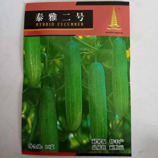 沭阳县 泰雅二号水果黄瓜种子原装10克耐高温高产抗病口感好基地专用品