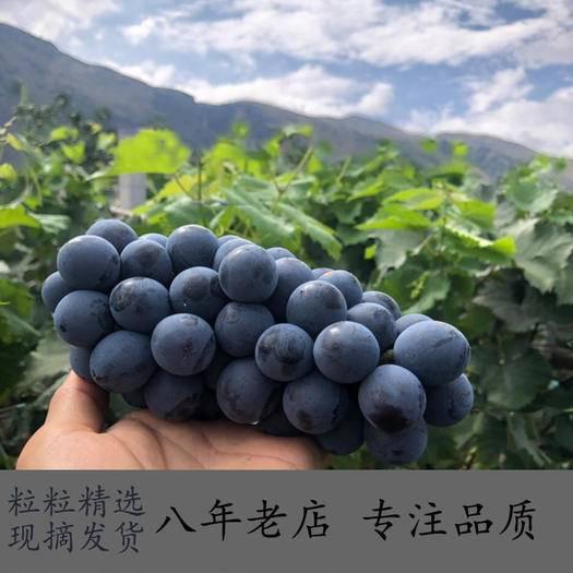 寻甸回族彝族自治县 【云南夏黑葡萄3斤/5斤】新鲜葡萄孕妇水果 偏远不发