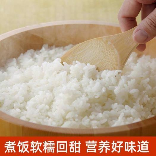 盤山縣 新米盤錦大米東北大米10斤20斤蟹田大米稻花香新米圓粒珍珠