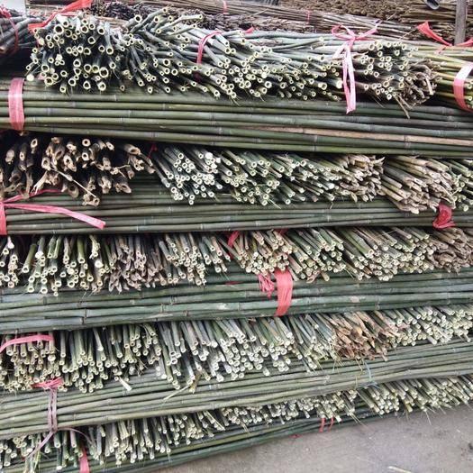 耒阳市 48条一捆的菜架竹