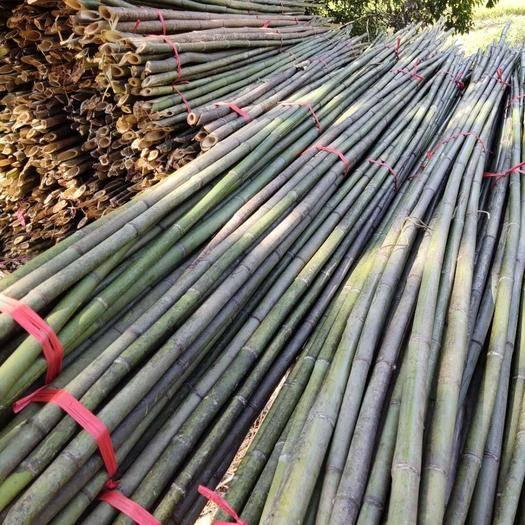 桂阳县 直供菜架竹、毛竹、楠竹、撑杆、实心竹、麻竹、水竹、黄金竹