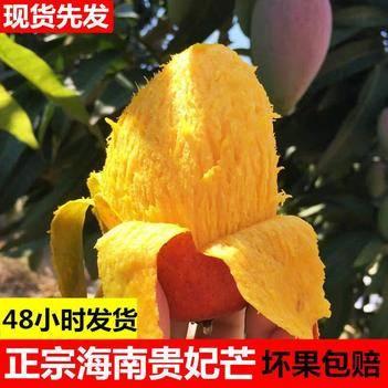 【一件代发】贵妃芒果新鲜孕妇水果包邮批发当季中大果红金龙