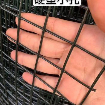 护栏网/围网 鸡鸭鹅围挡防护养网菜园网小孔养殖浸塑电焊网