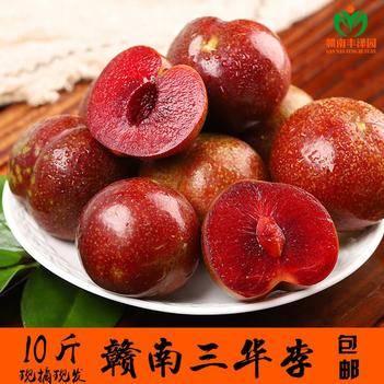 三华李 【坏果包赔】果园现摘10斤赣南红心李新鲜应季水果孕妇李