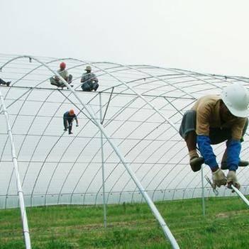种植大棚 蔬菜养殖大棚 钢管骨架 食用菌棚 成套大棚配件齐全