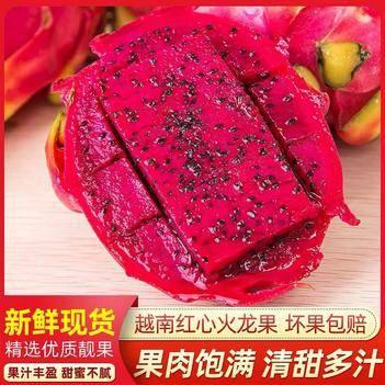 【破损包赔】越南红心/白心火龙果当季新鲜水果类孕妇批发整箱
