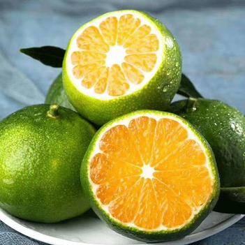 清香蜜桔 云南蜜橘 新鲜应季水果无籽桔子早熟青皮柑橘电商供应一件代发包
