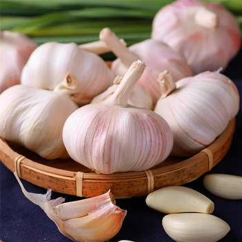 新鲜干大蒜紫皮大蒜头干蒜5斤装多瓣蒜新干蒜头包邮10祘独蒜头