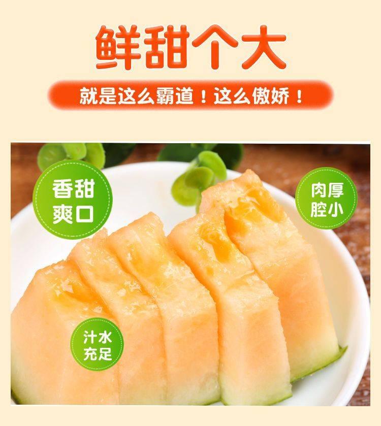 新疆哈蜜瓜 【香甜多汁】现摘海南哈密瓜10斤新鲜水果网纹瓜甜蜜瓜西州蜜瓜