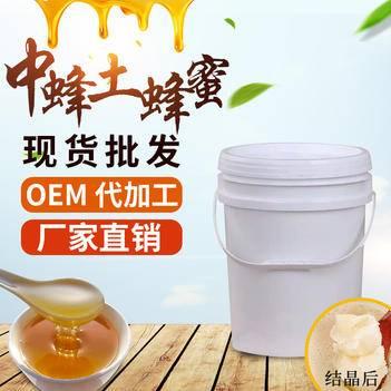 跑江湖地摊中蜂土蜂蜜山花蜂蜜纯蜂蜜批发50斤/桶包邮