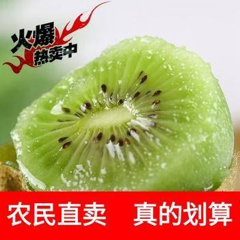 【现摘现发】陕西绿心猕猴桃新鲜时令孕妇水果5斤10斤批发价