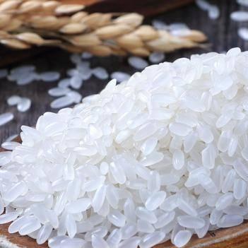 五常大米长粒香香米新米东北大米5斤/袋微商电商专供包邮