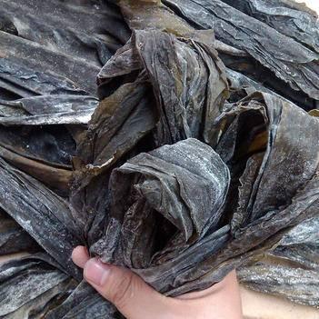 霞浦海带  100斤起包物流自产自销福建特产无沙散装干海带批发地摊霞浦干