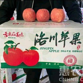 [优选]陕西洛川红富士特价秒杀新鲜苹果脆甜包邮大果多规格