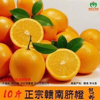 果园现摘20斤正宗赣南脐橙精品大果寻乌脐橙甜橙子可以批发代发