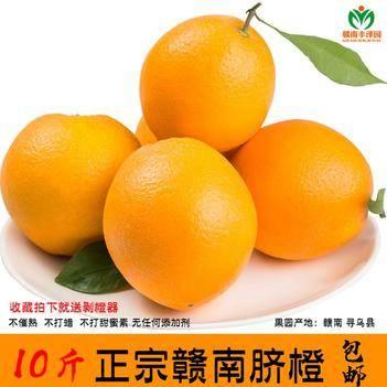寻乌脐橙  果园现摘10斤装正宗赣南脐橙寻乌甜橙子当季水果新鲜包邮