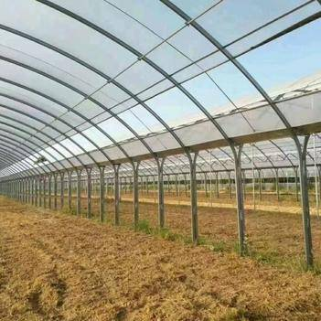 大棚  温室大棚骨架   蔬菜大棚 养殖大棚 钢管