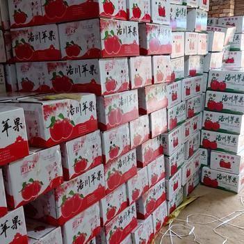 红富士苹果  新果陕西延安洛川水晶红富士脆甜新鲜水果秒杀包邮发货一件代发