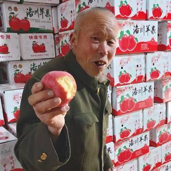 [发货中]陕西延安洛川红富士苹果脆甜口感纯商品一级果大宗批