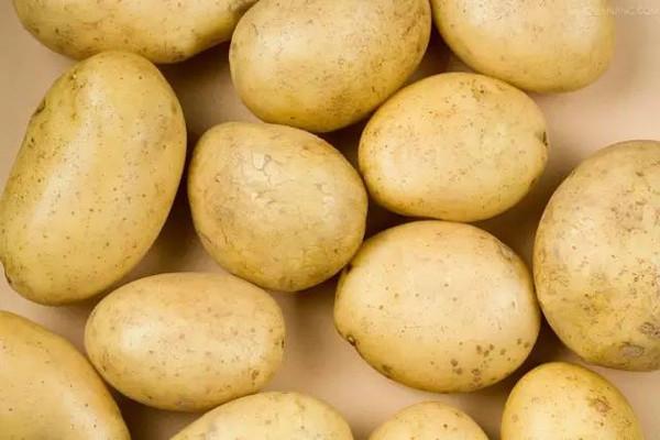 面土豆和脆土豆有什么区别?怎么挑选?
