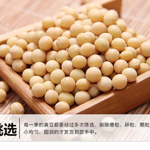 台安县有机黄豆 生大豆 1等品