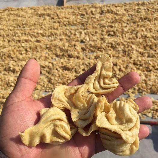 保定蓮池區豆腐皮 豆皮,豆耳,人造肉,素雞,豆制品,廠家直銷。