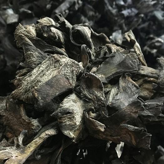 昆明官渡区干巴菌