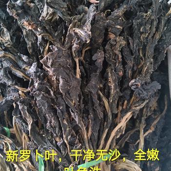 白萝卜叶 15~20cm